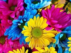 Rever De Fleur Signification Et Interpretation En Islam