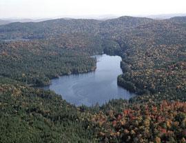 Rêver de lac.