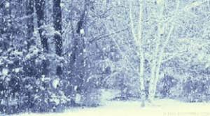 rever-de-neige