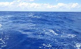 rever-de-ocean