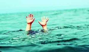 rêver de noyer.