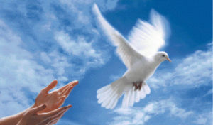 rêver de paix.